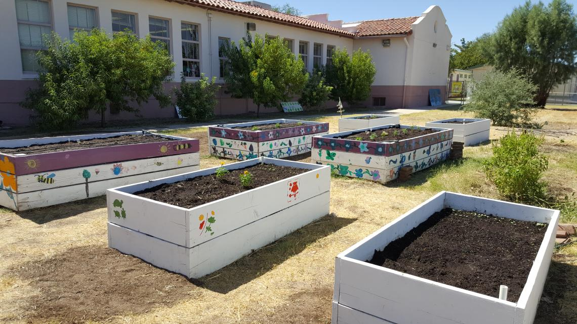 Multiple elevated squares of garden painted by children